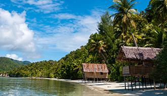 Papua New Guinea Medicals